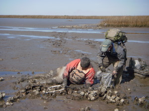 Scientists in Mud
